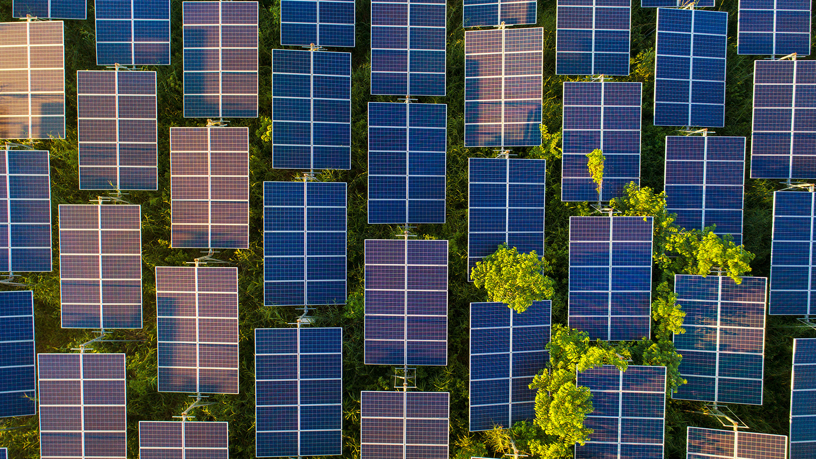 The State of Solar Panel Recycling in North America